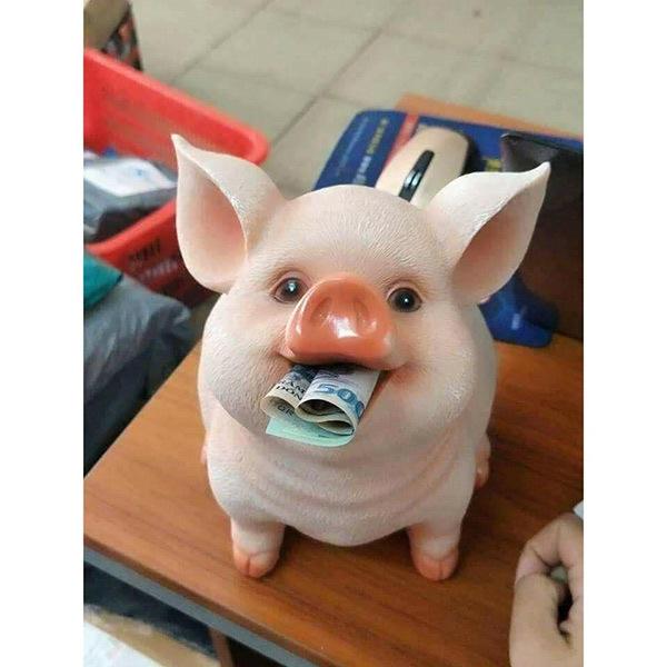 hình ảnh lợn ngậm tiền