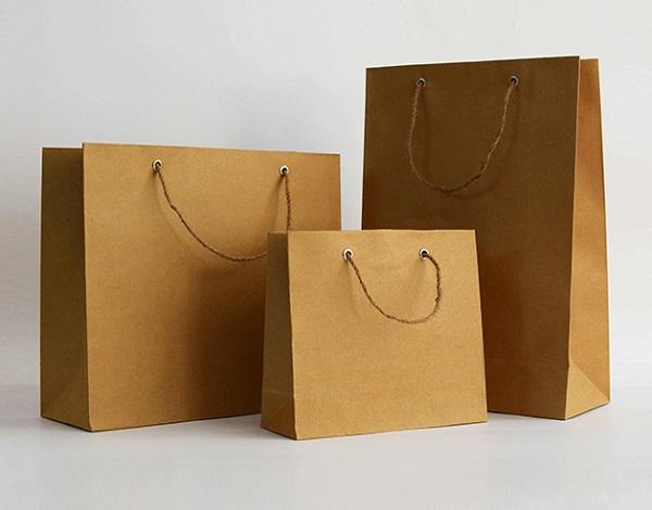 Túi giấy đựng sản phẩm