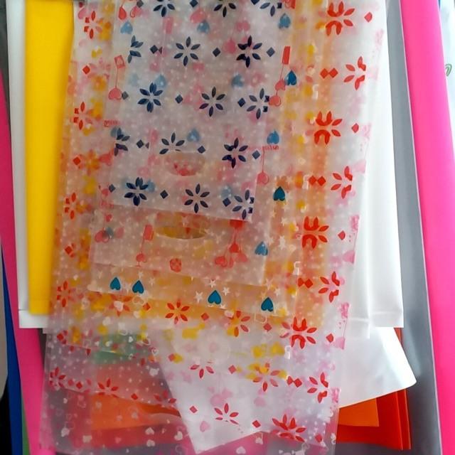 túi trong suốt in hình hoa lá